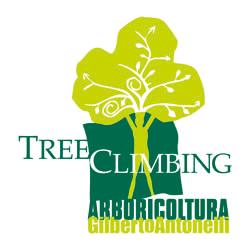 Tree Specialist - Varese